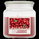 Bolsius vonná svíčka Lovely Cranberry 100x110 mm