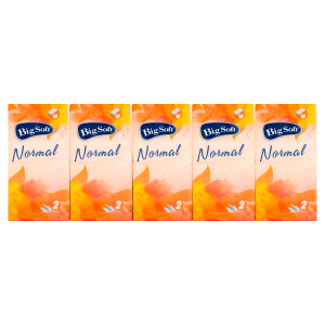 Big Soft Normal hygienické kapesníčky 2-vrstvy 10 x 10 ks